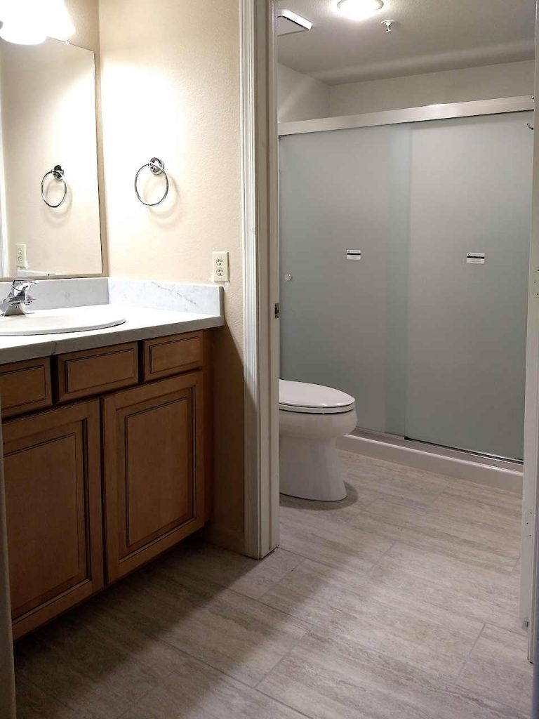 Vanity, quartz countertop, and new shower surround with frosted glass door